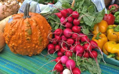 Fall Farmers Market Recipes