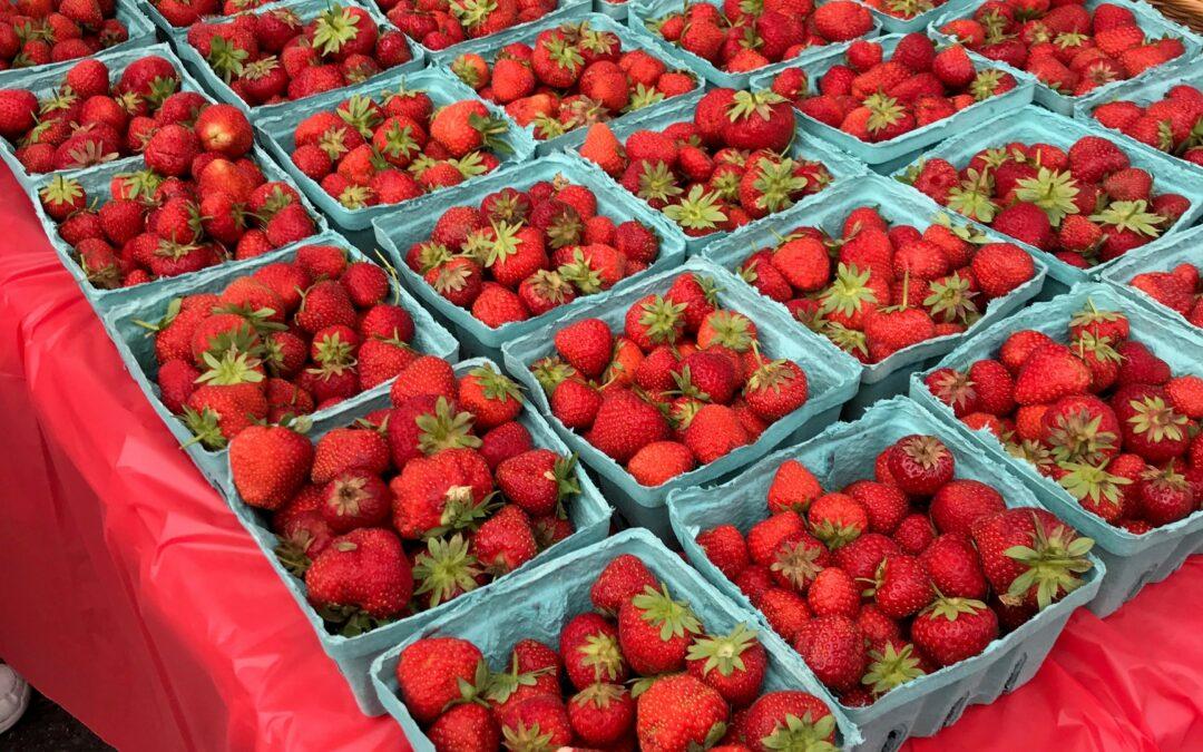 Strawberries at the Monroe Farmers Market May 22 2021