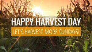 October 23 Harvest Day